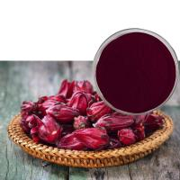 Buy cheap Organic Hibiscus Extract Powder , Hibiscus Flower Extract 3% Polyphenol from wholesalers
