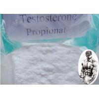 Buy cheap Muscle Building Pre - Mix Testosterone Propionate Injection CAS:57-85-2 100mg/ml 200mg/ml product