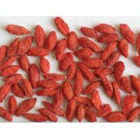 Buy cheap Organic Dried Natural Wolfberry Fruit Goji Berry / Wolfberry Strengthen Immunity from wholesalers