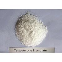 Buy cheap 99% Bodybuilding Steroid Powder Testosterone Enanthate for Muscle Mass CAS 315-37-7 product