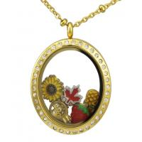 Buy cheap New 316L Stainless Steel Crystal Stones Floating Memory Glass Lockets Pendant Necklaces from wholesalers