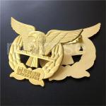 Buy cheap Golden Eagle Badge, Cutout Eagle Flying Badge Customized, Eagle LOGO Badge Brooch Custom from wholesalers