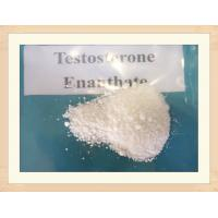 Buy cheap Raw powder for Test E 250 Anabolic Steroids Oil Testosterone Enanthate 250mg/ml from wholesalers