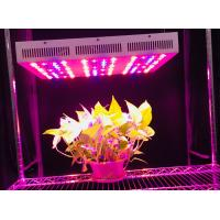 China 330 W 60 Degree Beam Angle Led Plant Grow Lights With 3 Years Warranty Full Spectrum+UV+IR on sale