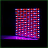 Buy cheap IP54 Indoor LED Grow Lights / ABS Full Spectrum Plant Grow Lights 32 W For Greenhouse product