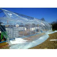 Buy cheap plastic film agriculture greenhouse,6 mil poly anti-uv plastic greenhouse film,Anti-fog UV resistant,mushroom,TOMATO PAC from wholesalers
