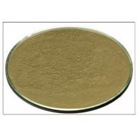 CAS 77 52 1 Rosemary Leaf Powder , Ursolic Acid Rosemary Leaf Extract