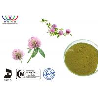 Buy cheap EU Standard Red Clover Extract Anti - Cancer Green Powder Pharmaceutical Grade from wholesalers