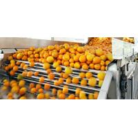 Buy cheap Engery Saving Orange Juice Production Industrial Orange Juice Machine ISO CE from wholesalers