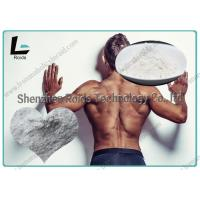 Buy cheap 566-19-8 Natural Bodybuilding Steroids 7 - Keto - DHEA / 7 - Keto - Dehydroepiandrosterone from wholesalers