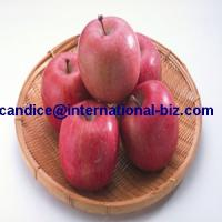 Buy cheap Apple extract / Apple Cider Vinegar powder from wholesalers