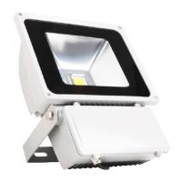 Buy cheap 50 watt Floodlight series white body warm white CE& ROHS approved from wholesalers