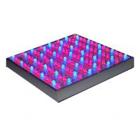 Buy cheap Red Blue Orange 55 Watt Hydroponic LED Grow Lights For Plants IP55 product