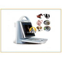 Buy cheap Animal Ultrasound Scan Machine Durable 6.5MHz R20 Micro Convex Probe from wholesalers