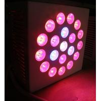 Buy cheap High power SMD Health IP65 Red Led Growing Lights 2400lm with full spectrum for bonsai from wholesalers