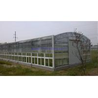 Buy cheap Agricultural Greenhouse Polycarbonate Hollow pc Sheet 10 years Guarantee from wholesalers