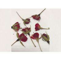 Buy cheap Grade A Red Dry Rose Flower , Natural Dried Flowers For Baby Birthday Party from wholesalers