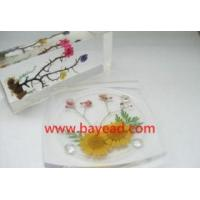 Buy cheap Real Flower Acrylic Coaster from wholesalers