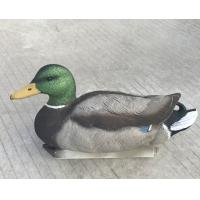 Buy cheap Newly developed mallard duck floatie with realistic decoy carving and painting from wholesalers