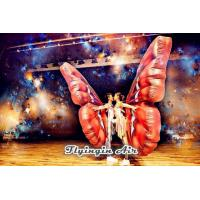 Buy cheap Hot Sale Wearable Inflatable Butterfly Wing for Stage and Dance Party from wholesalers
