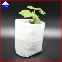 Buy cheap Degradable PP Agriculture Non Woven Fabric For Plant / Fruit Cover Bags Material from wholesalers