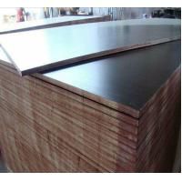 Buy cheap Concrete Formwork Film Faced Marine Plywood , WBP Glue Film Coated Plywood Panel from wholesalers