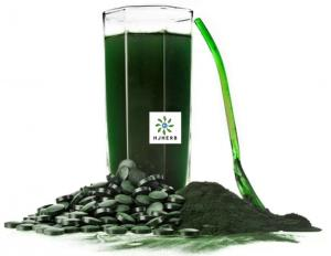 Buy cheap Natural Vitamin Tiny Green Cells Green Chlorella Powder Sports Supplement Antioxidants product