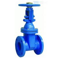 Buy cheap PN16 Ductile Iron Flanged Gate Valve , DN 250 BS5163 Rising Stem Gate Valve from wholesalers