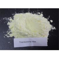 Buy cheap Trenbolone Series Powder Trenbolone Hexahydrobenzyl Carbonate For Bodybuilding CAS 23454-33-3 from wholesalers