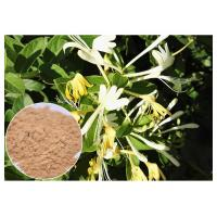 Buy cheap Anti Bacterial Natural Flower Extracts Chlorogenic Acid 5% Honeysuckle Flower Extract Powder from wholesalers