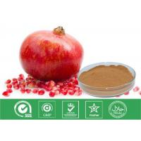 Buy cheap Cosmetic Grade Natural Punica Granatum Extract Anti Oxidant / Descenting Blood Pressure from wholesalers