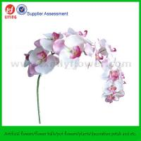 "China 45"" Silk Orchid Flower (14 FLWS) on sale"