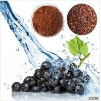 Buy cheap Water Soluble Grape Seed Extract (95% OPC/Proanthocyanidin) from wholesalers