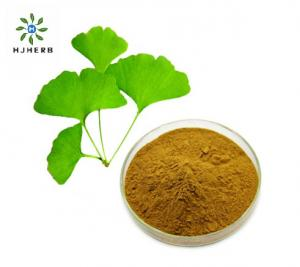 Buy cheap Water SolubleNatural Ginkgo Biloba Leaf Extract Powder product