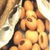 Buy cheap Soybean P.E from wholesalers