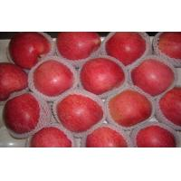 Buy cheap Big Bright Red Sweet Organic Apple Thick Skin From Shanxi QinGuan For Storage from wholesalers