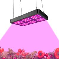 Buy cheap Low Power Consumption Indoor LED Grow Light Full Spectrum Growth Light 400W - 800w from wholesalers