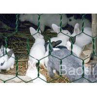 Buy cheap Plastic Coated Chicken Wire Mesh Galvanized Iron Wire As Fencing Mesh from wholesalers