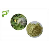 Buy cheap Plant Source Natural Dietary Supplements Pumpkin Seed Protein Powder Vegan Protein 50% 60% from wholesalers