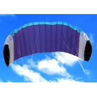 Buy cheap Promotion Power Kite from wholesalers