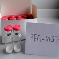 Buy cheap Muscle Repair Factor Mechano Growth Factor Mgf  PEG MGF  CAS 96827-07-5 from wholesalers