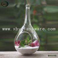 Buy cheap Haning Glass Plant Ornament from wholesalers