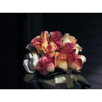 Buy cheap Silk wedding flower from wholesalers