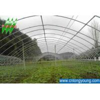 Buy cheap Economical Tunnel Greenhouse 8m*30m from wholesalers