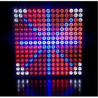 Buy cheap 45 Watts Grow Light Hydroponic LED Grow Light 35W Square Panel With Color Red & Blue from wholesalers