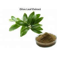 Buy cheap Olive Leaf Plant Extract Powder With 20% Oleuropein Powder Regulate Immunity from wholesalers