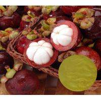 Buy cheap Mangosteen Extract (Fruit Extract) 10%~90% Mangostin/100% Pure Natural Garcinia mangostana fruit Extract/CAS 90-47-1 from wholesalers