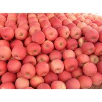 Buy cheap fruit market prices apple from wholesalers