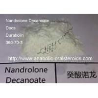 Buy cheap Muscle Growth Deca Durabolin / Nandrolone Decanoate  360-70-3 Long Steroid Cycle from wholesalers