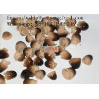 Buy cheap Best hot selling newly ingredient canned new ingredient whole straw mushroom canned from wholesalers